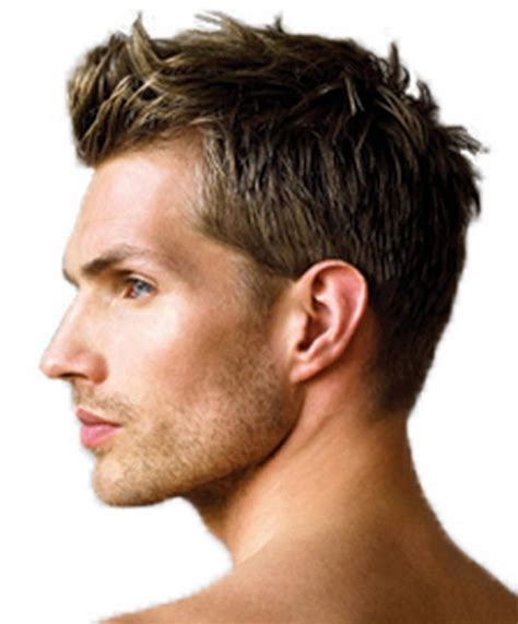 mens regular hairstyle regular hairstyles for latesthairstyless us hairstyle
