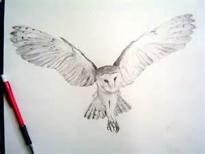 wing barn menu barn owl wings www imgkid the image kid has it