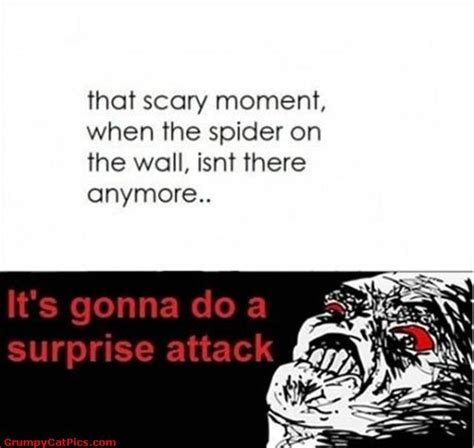 Scary Spider Meme - scary funny pics