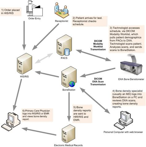 system workflow bonestation system workflow