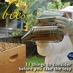 How To Keep Bees Or Bee Keeping In Rhode Island 89 best images about beekeeping on see more