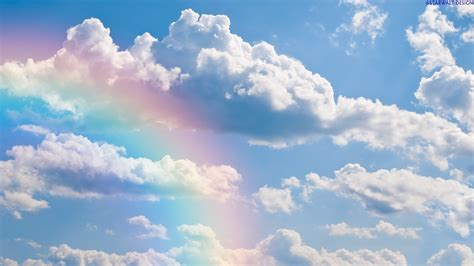 rainbow cloud 1301 job 25 and 26 dwelling in the word