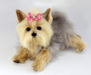 yorkie puppies 101 dogs 101 terrier best breed facts animal facts animal facts