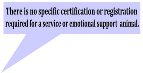 emotional support vs service emotional support animal vs service animal the facts mod