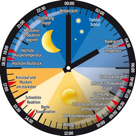 winterzeit wann wird die uhr umgestellt zeitumstellung sommerzeit winterzeit news 220 berblick