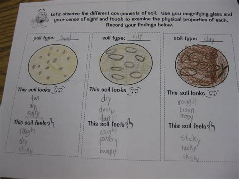 Soil Worksheets For 3rd Grade by Third Grade Thinkers Types Of Soil Investigation And