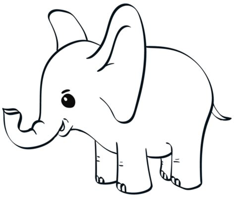 baby elephant coloring page  printable coloring pages