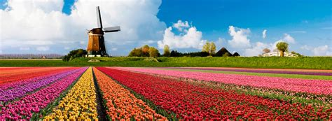 The Time Garden by Explore Europe S Beautiful Gardens In Time The
