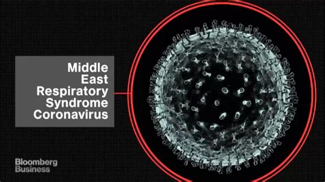 mers virus outbreak      health