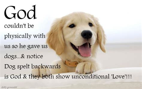 puppy pictures with sayings your quotes quotesgram