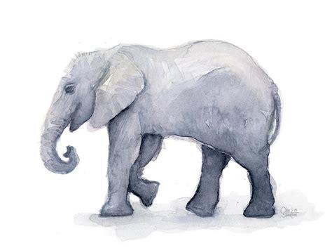 Asian Duvet Cover Elephant Watercolor Painting By Olga Shvartsur