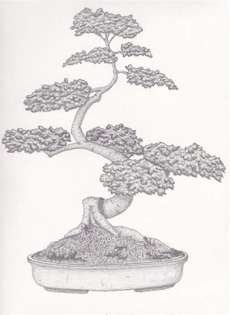 japanese bonsai tree tattoo designs 32 best japanese bonsai tree outlines images on