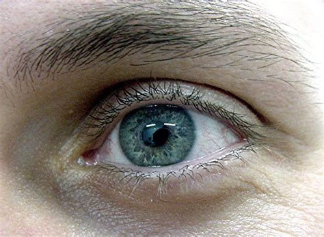 imagenes de ojos alegres imagenes de ojo busqueda fotografias picture to pin on