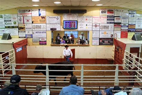 livestock auction two nw kan to compete in world livestock auctioneer