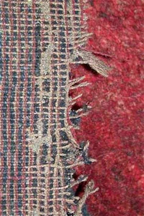 mottenbefall teppich contra motten bio hirsch