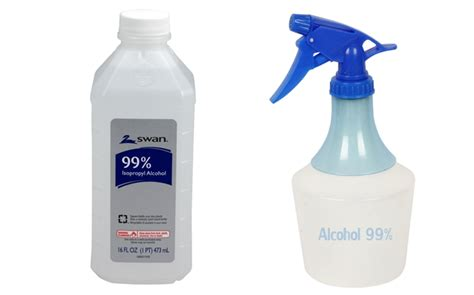 does isopropyl alcohol kill bed bugs does rubbing alcohol kill bed bug eggs 28 images 4