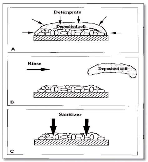 biofilm adalah oxyquart solusi dalam mengatasi biofilm pt kevin