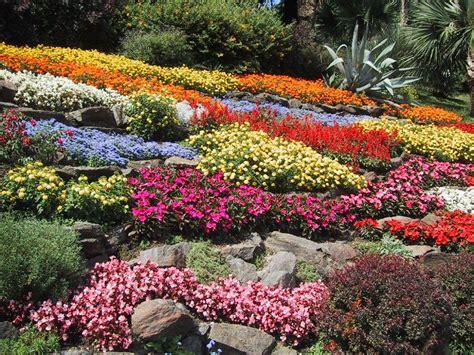 flores de jardin fondos escritorio flores jardines