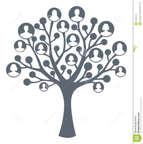 Family Tree Concept Stock Vector Image 47352444 Family Tree Concept Stock Vector