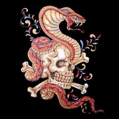 skull and snake tattoo design snake and skull design