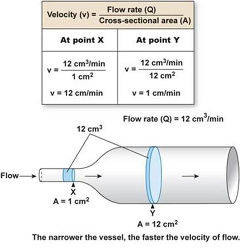 how to calculate cross sectional area of a pipe blood flow in the arterial system