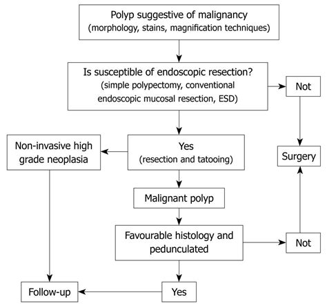 haustral pattern definition malignant colorectal polyps