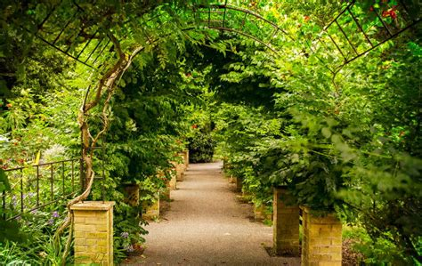 Ventnor Botanical Gardens Drop In Visitor Numbers At Botanic Garden Since Changing
