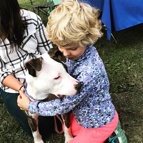 spotty rescue home spottydogrescue org