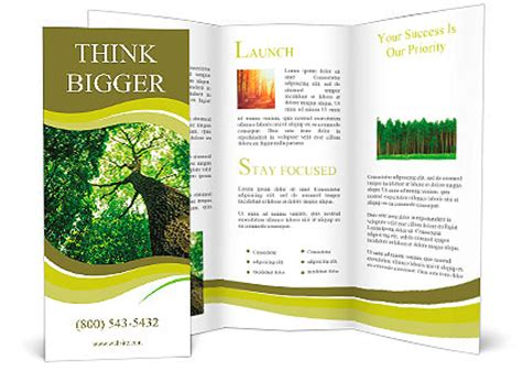 brochure template nature forest trees nature green wood sunlight backgrounds