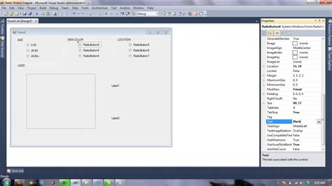 tutorial visual basic 2010 simple radiobutton exle tutorial visual basic 2010