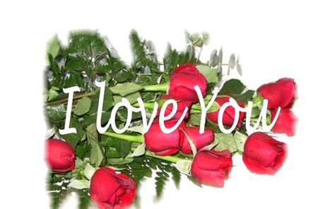 flower wallpaper with message flower love flowers message red roses desktop flower