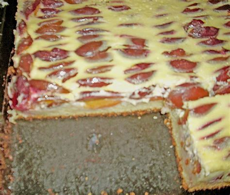 saftiger kuchen teig pflaumenkuchen mit quark 214 l teig rezept mit bild