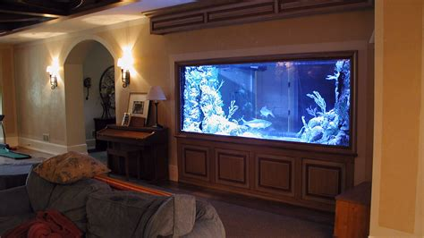 Aquarium Room Divider Chicago Custom Aquariums Fish Tank Company