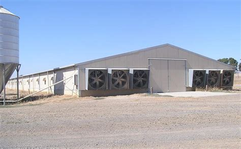 Controlled Poultry Sheds Design 187 1 poultry farm shed design in pakistan free 10 215 16