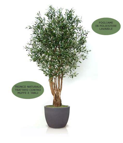 ulivo in vaso prezzo cerchi olivo malabar artificiale h9304 ia scelta su