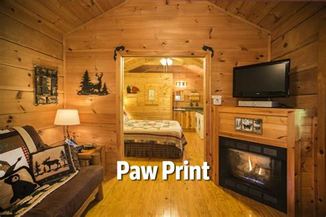 pet friendly nc mountain cabins dogs