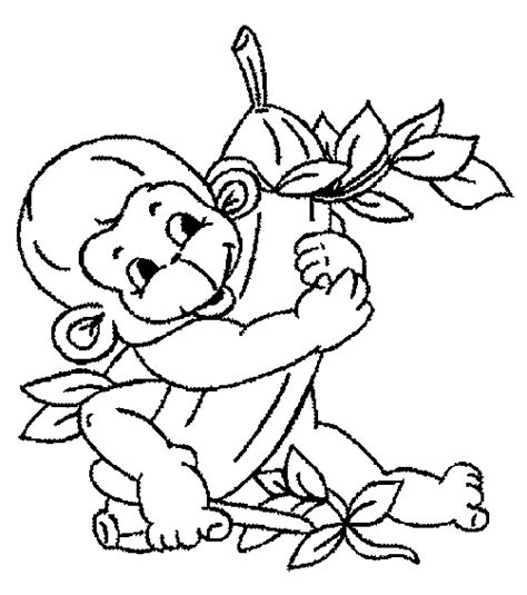 monkey coloring pages for adults monkey coloring pages