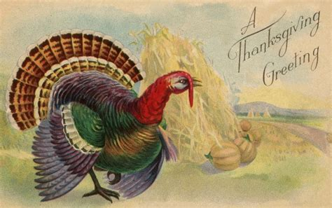 Thanksgiving Free Clip Vintage by 21 Thanksgiving Clipart Jpg Vector Eps