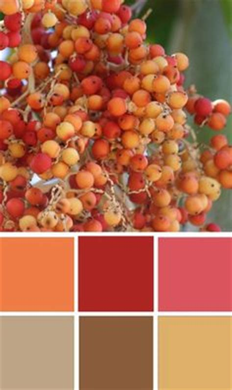 earthy orange 1000 ideas about earthy color palette on pinterest