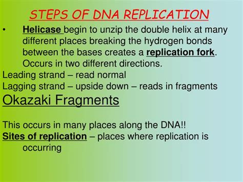ppt why do we study dna powerpoint presentation id