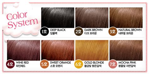 Etude Hair Color Di Counter review etude house hair coloring 2 brown