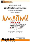 bowling certificate template free printable bowling certificates bowling awards