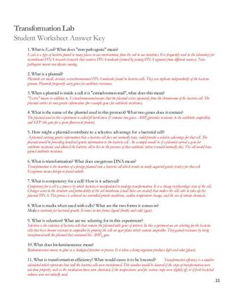 cell division worksheets pdf photosynthesis worksheets