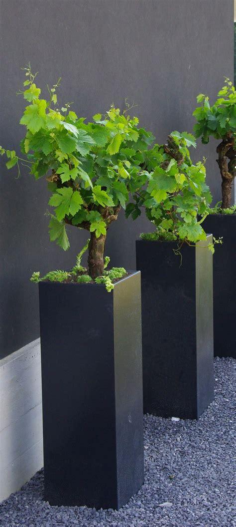 decor fabulous tall planters  cool garden decoration