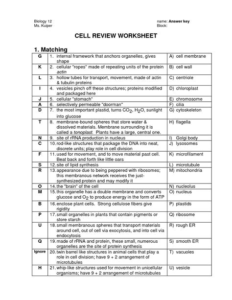 Cell Organelle Review Worksheet by 16 Best Images Of The 12 Cell Review Worksheet Answers