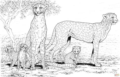 cheetah coloring page printable cheetah family coloring page free printable coloring pages