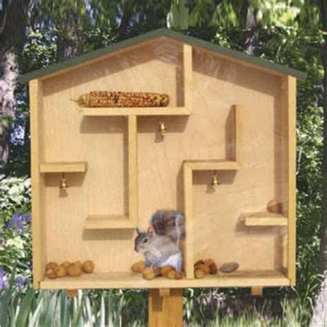 Squirrel Houses Plans A Mazing Squirrel House Plan Workshop Supply