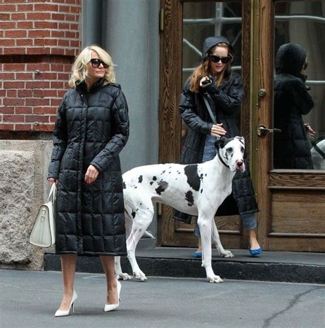 cameron diaz dog cameron diaz in scenes from the other woman set in nyc 4