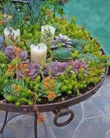 succulent planters 25 best ideas about succulent planters on pinterest
