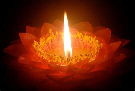 kerzenhalter blume candle flower source of inspiration